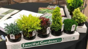 12 Garden Retailer Favorites From Farwest 2018