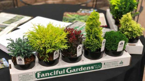 12 Garden Retailer Favorites From Farwest 2018