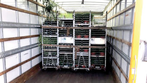 Shipping Update: Greenhouse Growers Face Driver Shortages, Stringent Trucking Rules