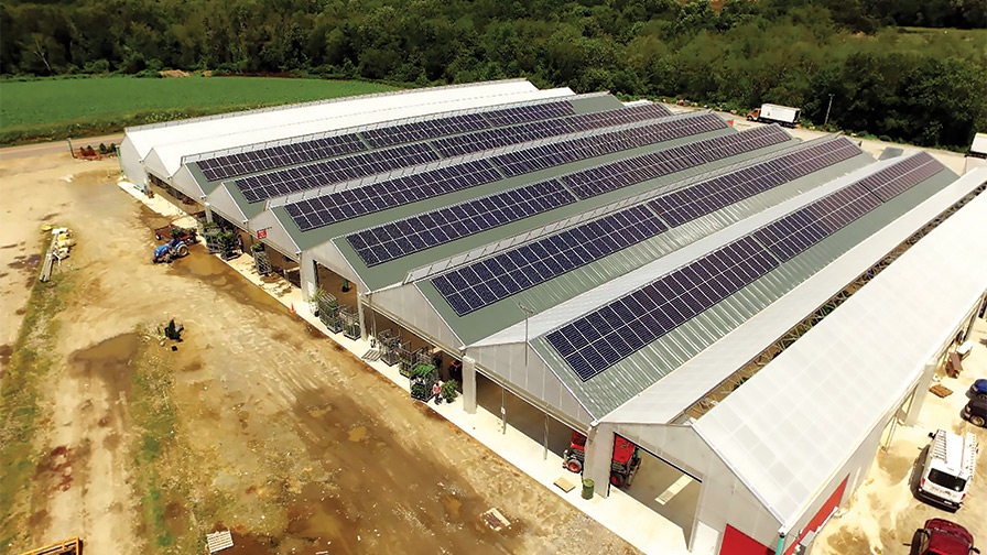 Solar Panels at Prides Corner Farms