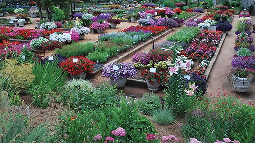 University-of-Georgia trial gardens