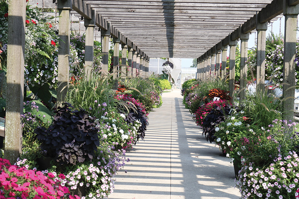 Four-Star-Greenhouses-2018-Trials spring season