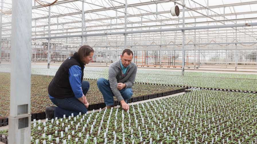 Jennifer Neujahr of Profile Products visits with South Central Growers