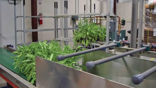 Automation Helps The Growers Exchange Keep Up With Rising Demand