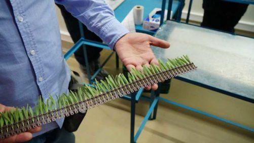 Darwin Perennials To Begin Shipping AutoStix From Darwin Colombia