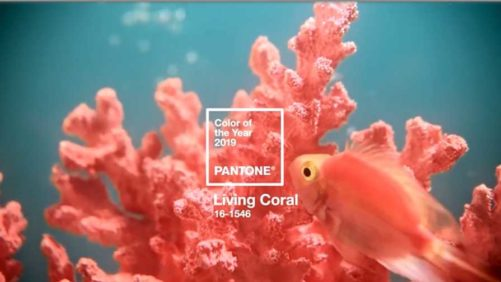 Pantone Looks to the Sea for Its 2019 Color of the Year