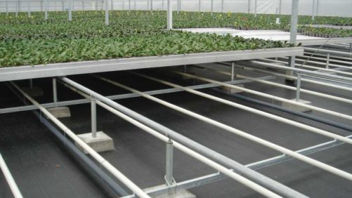 Investment in Floors Leads to Water Savings at Westerlay Orchids