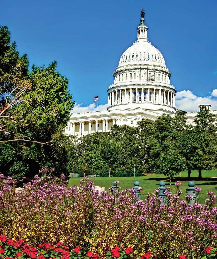 Washington-DC-Web