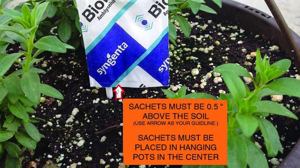 Biocontrol sachet placement reminder