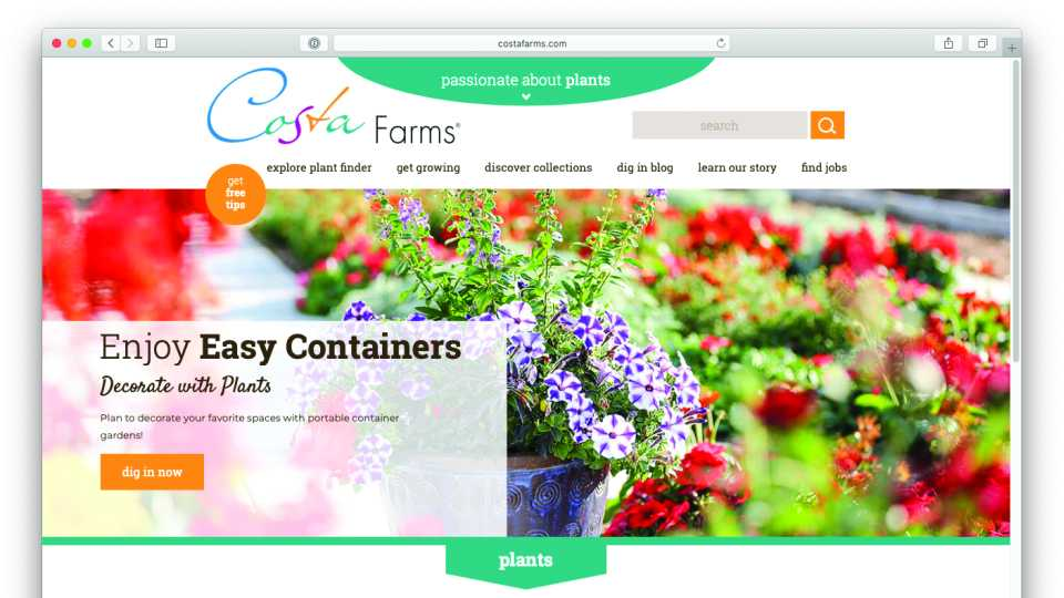 Costa Farms website screen capture