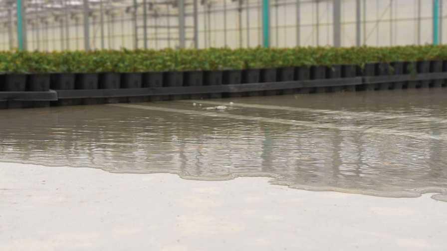 Flooded floor at Spring Meadow Nursery