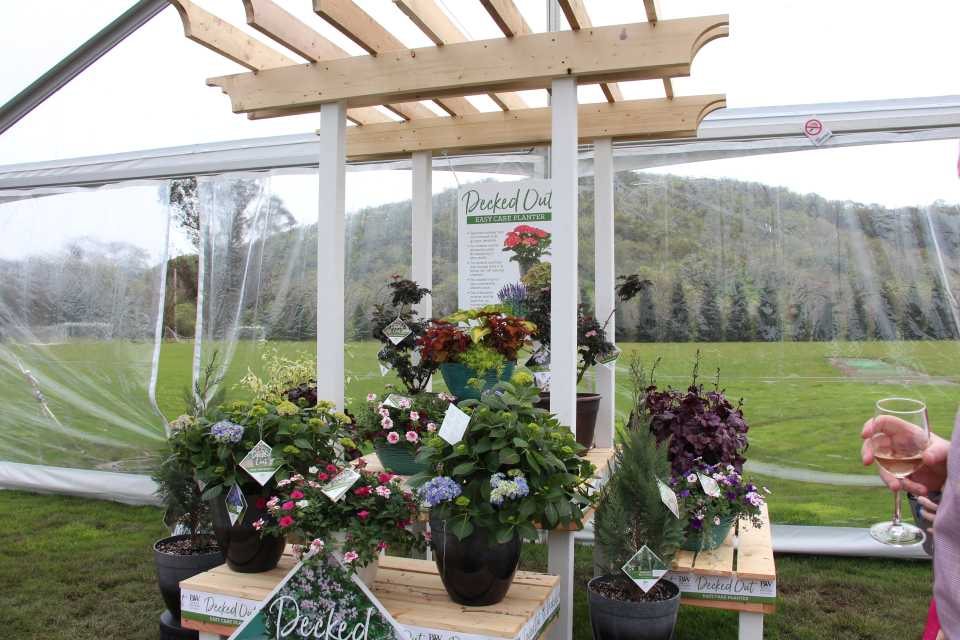 8 Ways to Sell Plants California Spring Trials 2019 Style