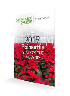 Download Your Copy of Greenhouse Grower's State of the Poinsettia Industry Whitepaper