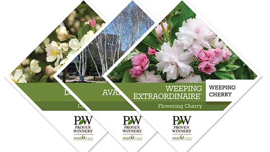 Proven Winners ColorChoice Shrubs Tree Tags