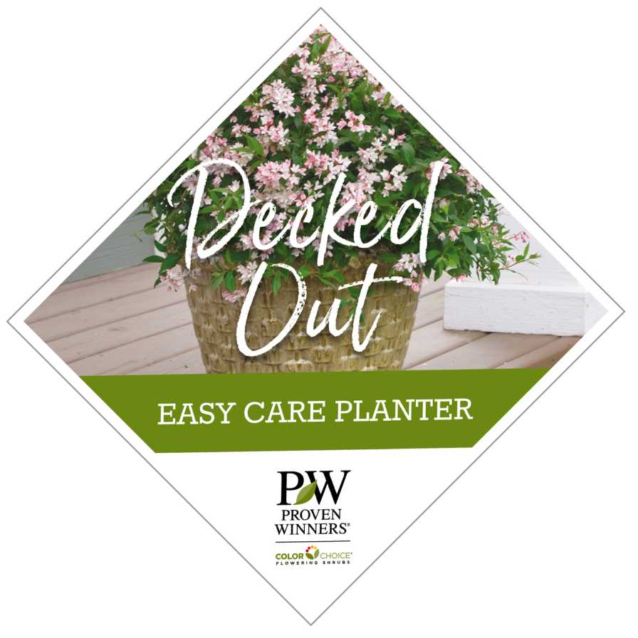 Decked Out Diamond web deco planter
