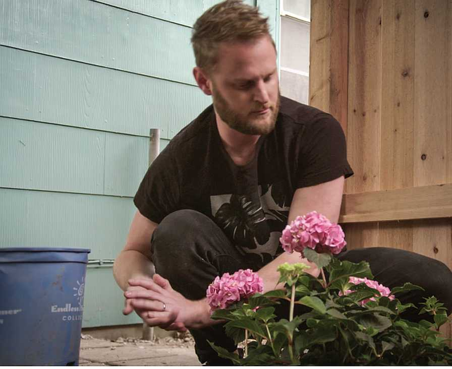 Endless Summer hydrangea makes appearance on Queer Eye
