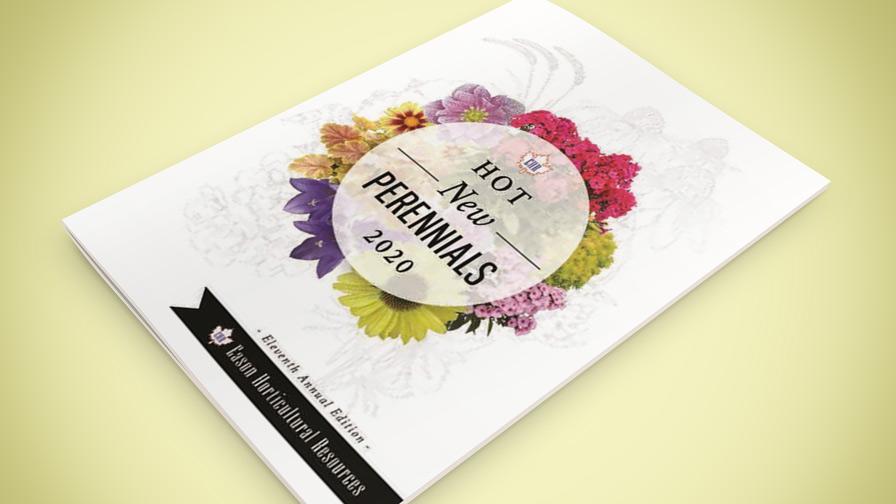 Eason New Perennials Booklet