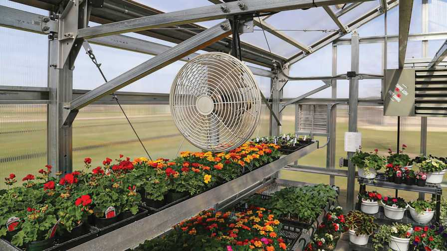 large fan cooling a greenhouse