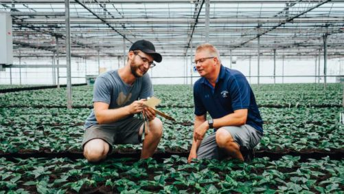 Greenhouse Grower - The leader in profits, production, and