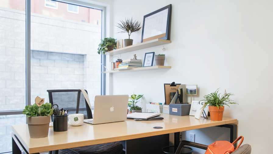 Office plantscape