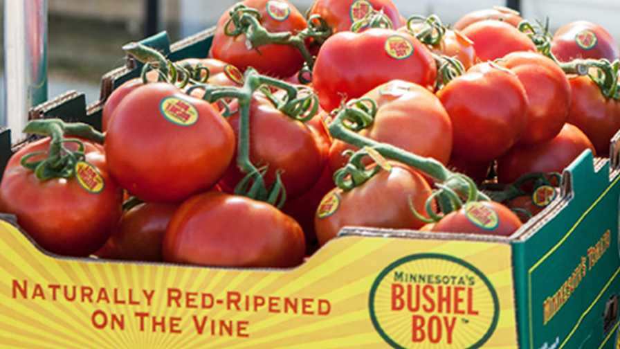 Bushel Boy Farms