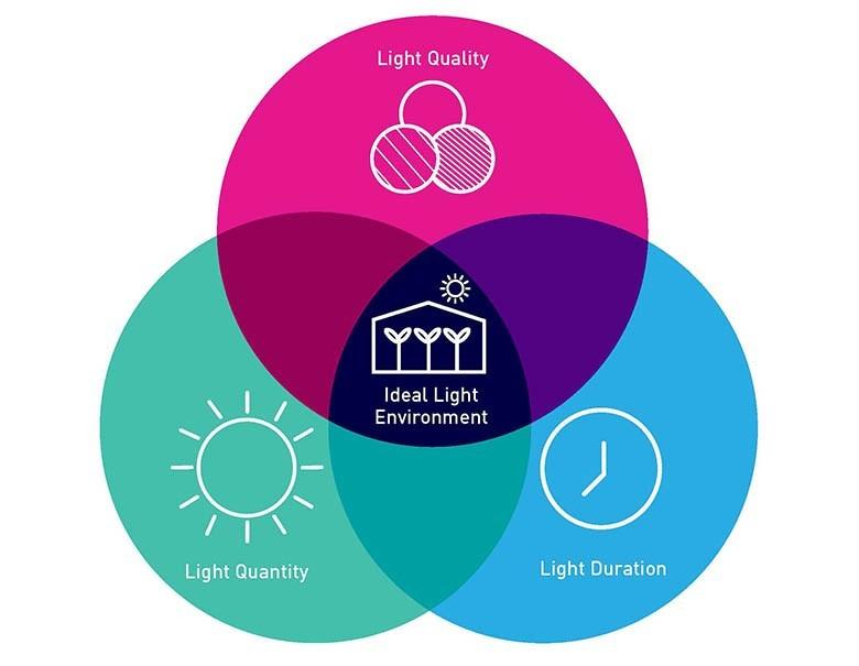 LumiGrow Ideal Light Environment