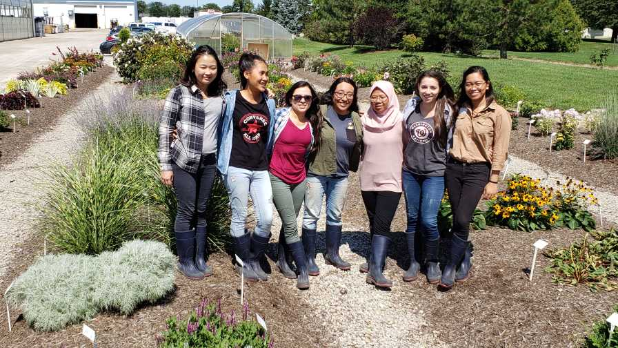 Corso's Perennials Interns