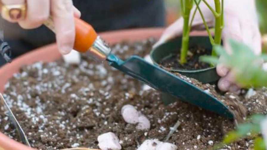 Magee Rehabilitation Hospital NGB therapeutic garden grants