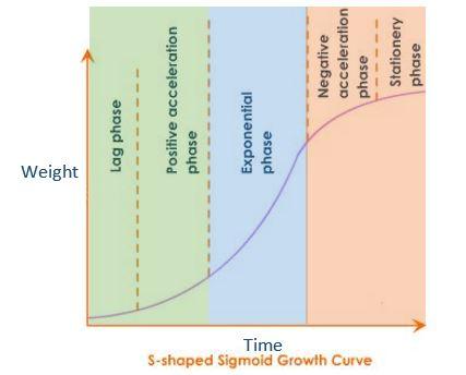 Vertical Farming Sigmund Growth Curve