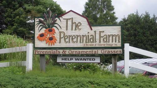 The Perennial Farm Joins HGTV HOME Plant Collection