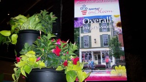 America In Bloom Moves Forward With New Management Company