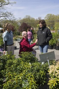 Customers at Lakeview Nurseries