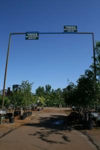 Bordine tree height sign