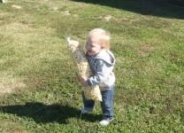Even kids love the salty-sweet taste of kettle corn.